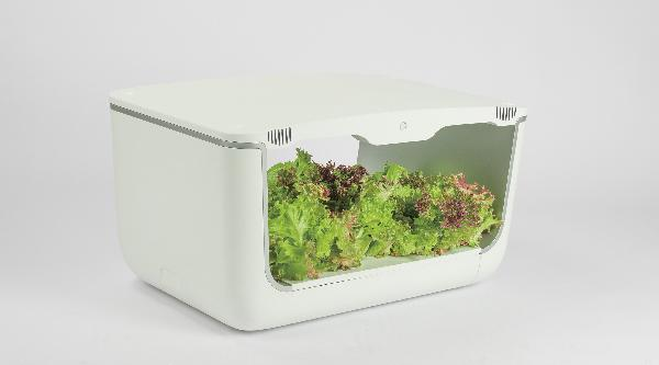 VegeBOX Home Vegebox planting machine with EU plug, white
